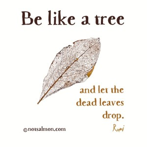 quote-tree-rumi